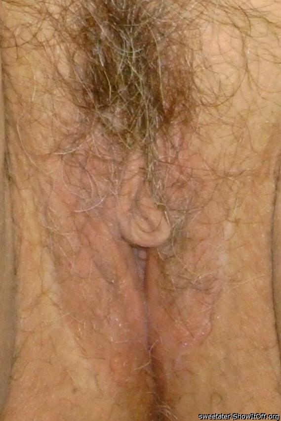 hairy slutty webwhore